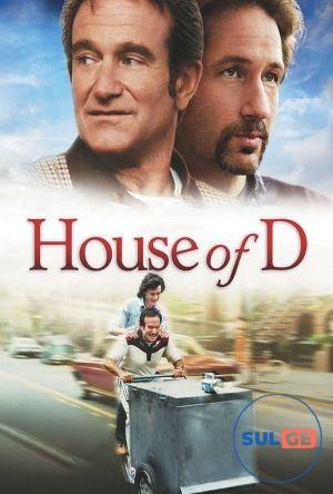 House of D / დ-ის სახლი / d-is saxli