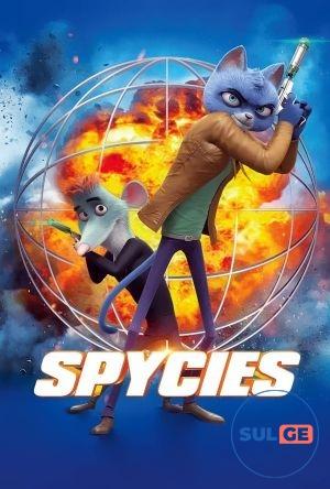 Spycies / ჯაშუშები / jashushebi