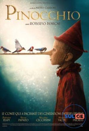 Pinocchio / პინოქიო / pinoqio